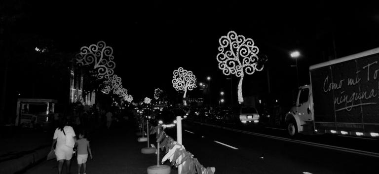 Avenida Bolivar blanco y negro.